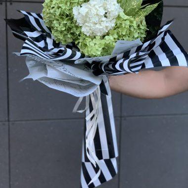 Zeleno bele hortenzije u crno belom buketu
